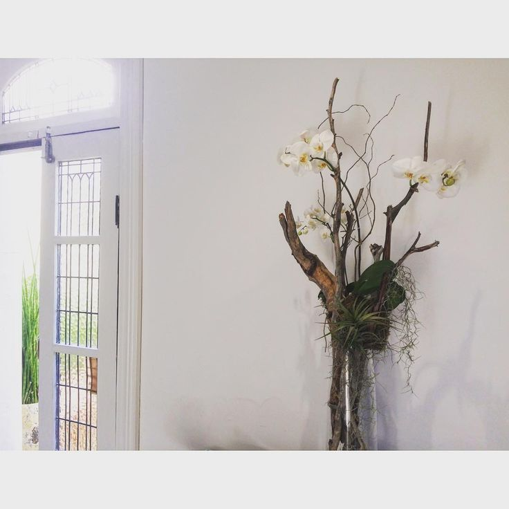 Orchid & Driftwood Sculpture Botanical Styling by Emilia Spencer-Brown  info@bloodwoodbotanica.com