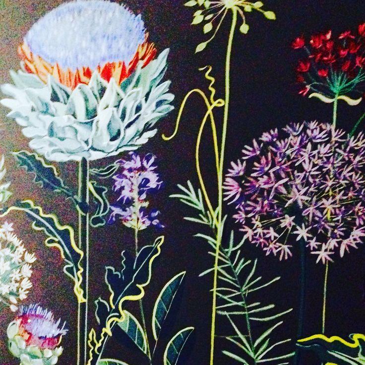Stunning Herb Garden mural by Lucy Tiffney for Church Street Tavern, Colchester