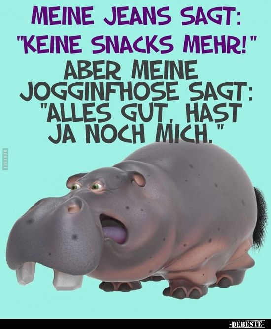 "Meine Jeans sagt: ""Keine Snacks mehr!""..   Lustige…"