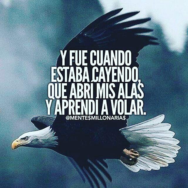 Excelente martes! Hoy no temas caer en ocasiones necesitamos lanzarnos al vacío para desplegar nuestras alas.  #LaCuadraU #FelizMartes #FrasesLCU #Martes #FelizDia #Adelante #Volar