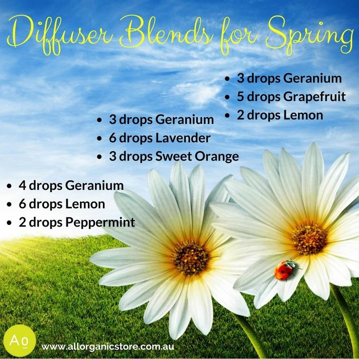 Do you love the smell of Spring? Here's a few diffuser blends for you!