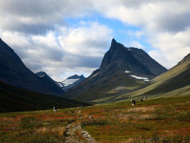 Kungsleden (King's Trail). Nallo Mountain.