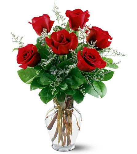 Our Unique collection of finest Erika Red Roses makes them a perfect gift for the occasion. Half dozen Erika Red Roses for a fantastic bargain on special Day.