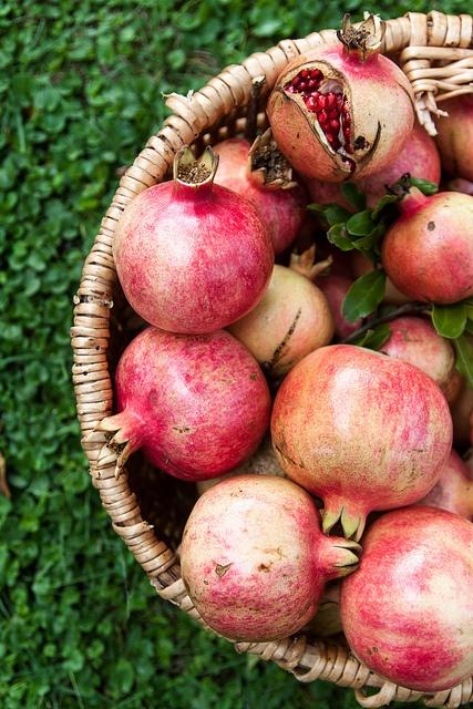 Fruta Granada En Ingles Interesting Spanish Fruit Word