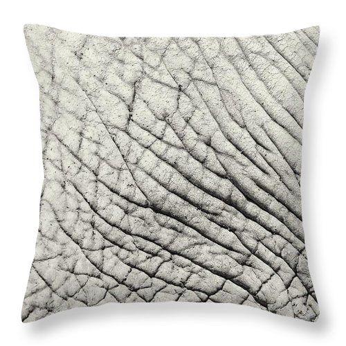 Elephant Skin Texture Throw Pillow