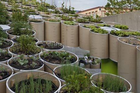 Public Farm One by Work Architecture Company is an urban farming project, shown outside the P.S.1 Contemporary Art Centre
