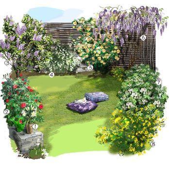 Projet aménagement jardin : Jardin parfumé Lys blanc Rosier 'Provence&#3…