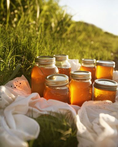 someday....Lord willing next year <3Farms Life And Country Living, Simple Life, Local Honey, Bees Honey, Raw Honey, Honey Jars, Country Life, Small Farms, Honey Bees