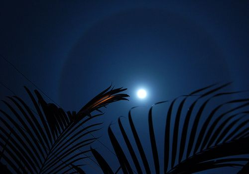 Ring around the Moon from Costa Rica. Image credit: Bruce Thomson