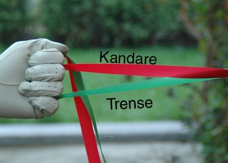 Gekreuzt Zeigefinger - Kandare und Trense richtig halten.