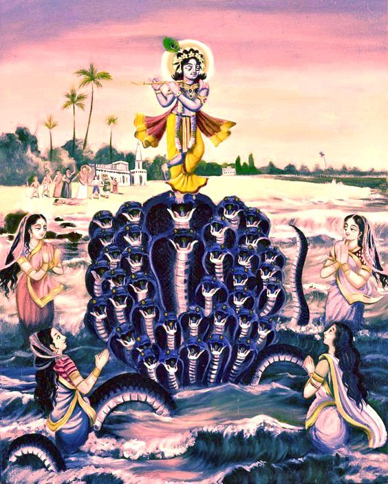 """""""Snake Kaliya with its numerous hoods symbolises the numerous desires we have. When one desire gets fulfilled, another arises, like the new hoods of Kaliya. The hoods keep breaking and forming, but Krishna is unperturbed. He keeps playing His flute, denoting the power of discrimination, of wisdom, of the focus on the bliss of Self. The wife of Kaliya prays to Krishna, that is, her prayer in which she desires her husband to come back whole leads to re-creation of the hoods."""""""