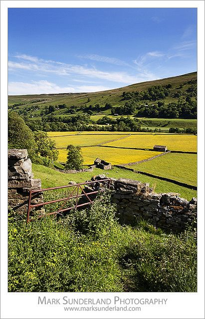 Summer Meadows at Gunnerside in Swaledale Yorkshire Dales England, I am going there soon with my two lovely sisters, can't wait!