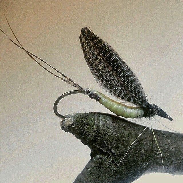 #flytyingbench #flugbindning #flylife #flytyer #fluga #flytyingjunkie #fishin…