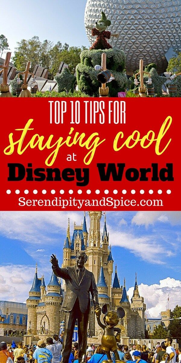 10 Tips for Staying Cool at Disney World ~ Planning a trip to Florida this summer?  Many of these tips are things I never thought of before! http://serendipityandspice.com