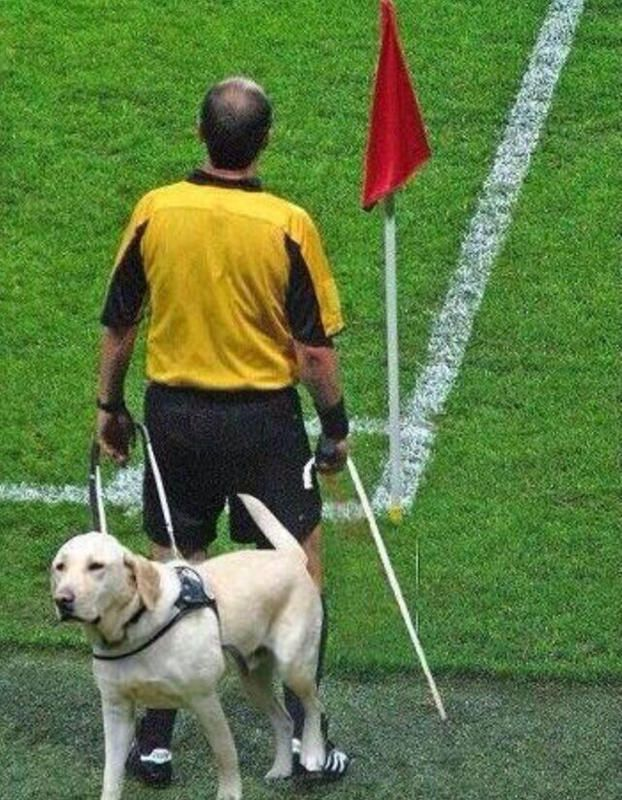 FIFA 2014 World Cup in Brazil. Some soccer fans feel like some of the REFEREES are BLIND while officiating the games. ha ha ha