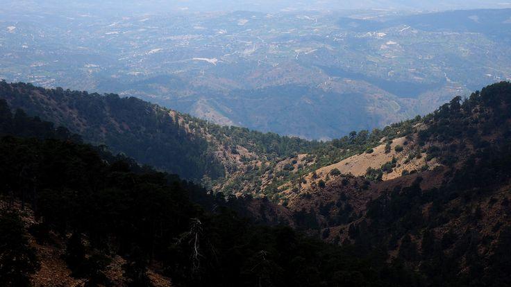 #cyprus #кипр_фото #кипр_путешествие #троодос #горы #пеший_поход #troodos