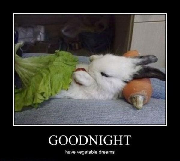 Ideas About Good Night Funny On Pinterest Happy Monday Monday Morning Humor And Its Monday Meme
