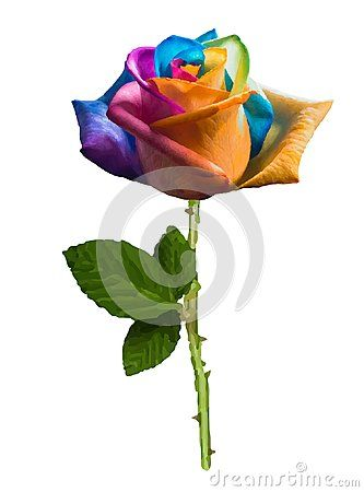 Futuristic realistic rose colored in the spectrum colors isolated on white background.