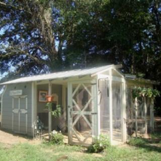 My chicken coop.: Nice Chicken, Chicken Coops 3, Chicken Stuff, Chicken Houses, Chicken Obsession, Razzledazzlefarm Com Chicken