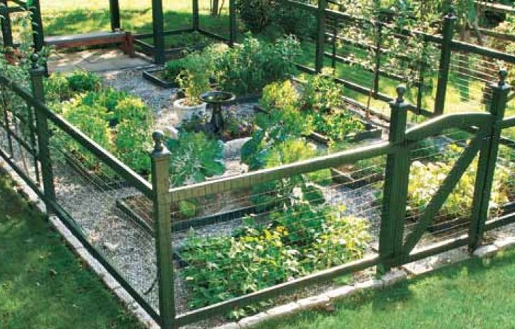 Best 25 vegetable garden fences ideas on pinterest fence garden small garden fence and - Garden ideas to keep animals out ...