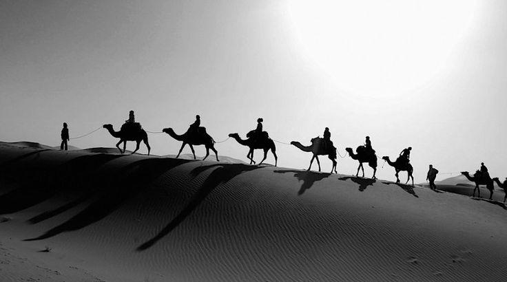 """Tiga Siku - Rasulullah shallallahu 'alaihi wa sallam bercerita mengenai Uwais al-Qarni tanpa pernah melihatnya. Beliau shallallahu 'alaihi wa sallam bersabda, """"Dia seorang penduduk Yaman, daerah Qarn, dan dari kabilah Murad. Ayahnya telah menin"""