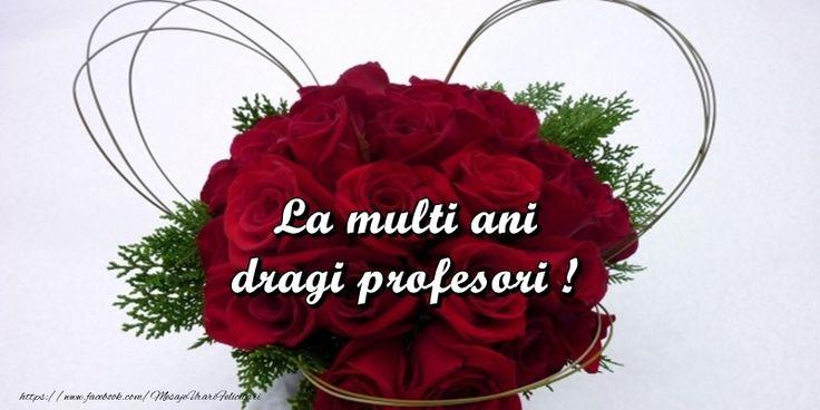La multi ani dragi profesori!