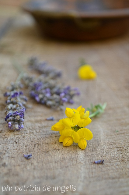 Lavanda e fiori di campo by Patrizia De Angelis, via Flickr