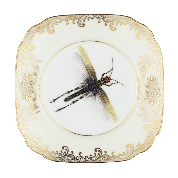 Dragonfly gold side plate