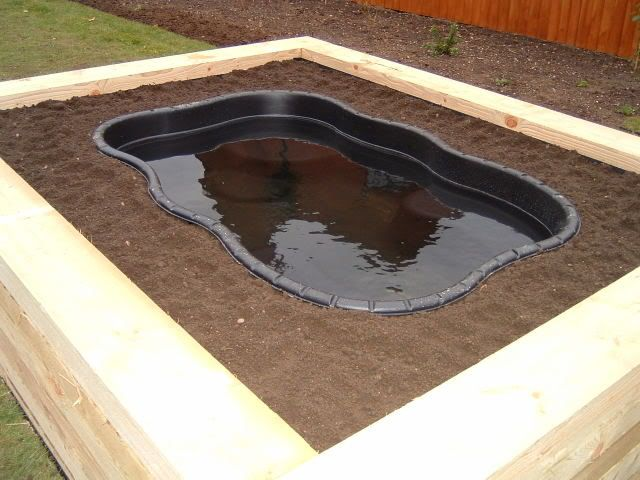 New raised pond garden world discussions water ponds for Raised garden pond designs