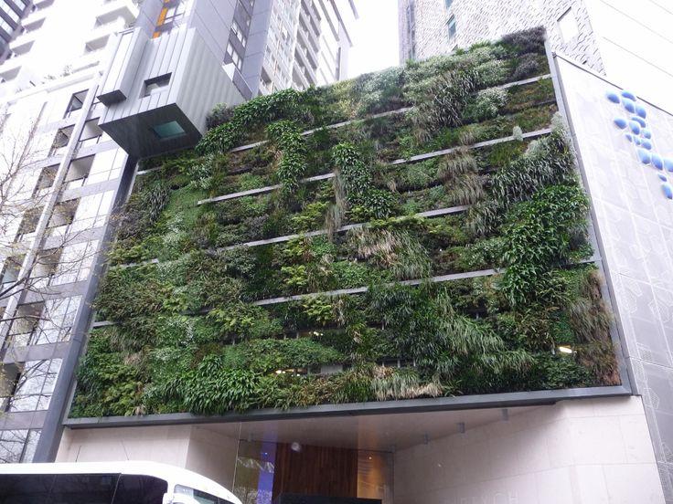 Vertical Garden Ideas Australia 196 best green wall images on pinterest | vertical gardens