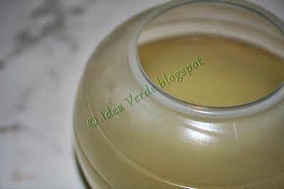 La zucca capricciosa: Sapone Alga liquido per lavatrice