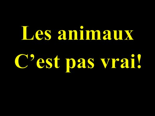 les-animaux---pas-vrai!.pptx