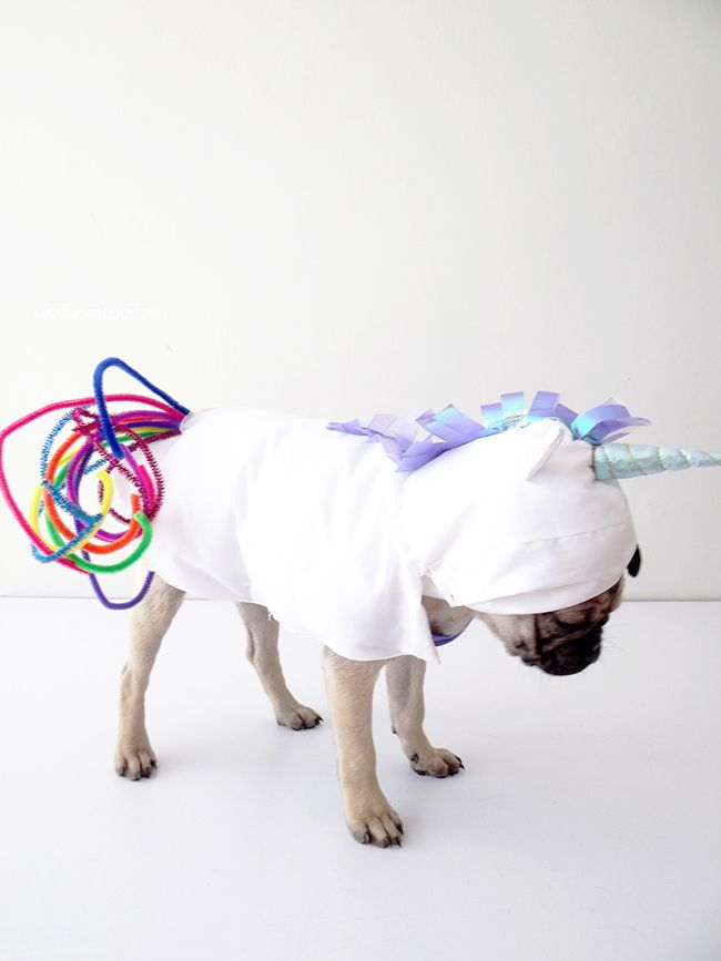 Halloween Dog Costume 3 Instructions For Unicorn Costume And 20