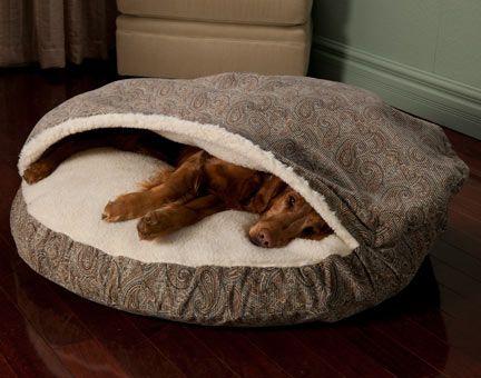 best 25 dog blankets ideas on pinterest diy dog blankets diy pet blankets and dog bed