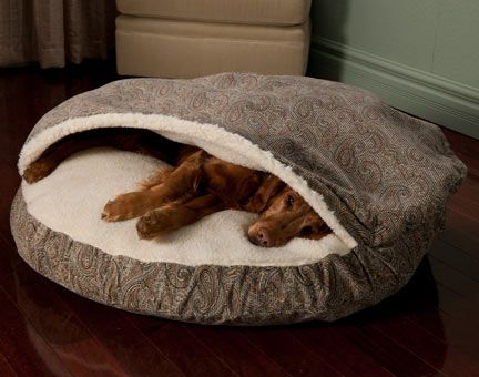 The perfect dog bed, Puzzle would love this since he gets under the blankets!!
