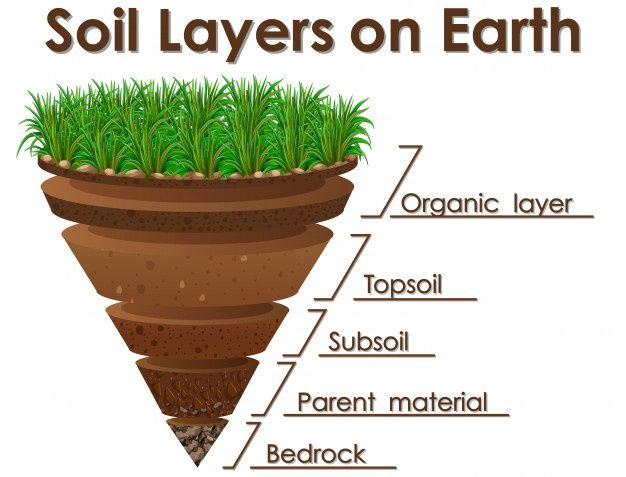 Download Diagram Showing Soil Layers On Earth For Free In 2020 Soil Layers Earth Texture Soil