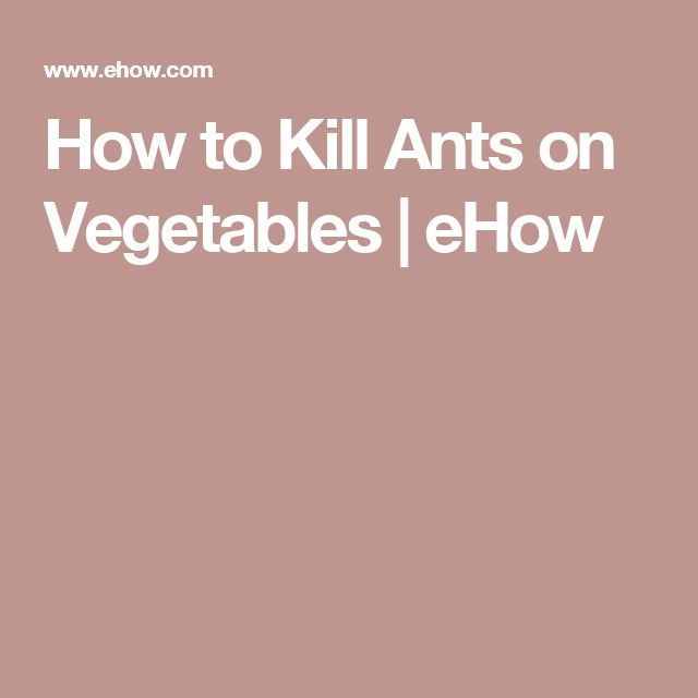 How to Kill Ants on Vegetables | eHow