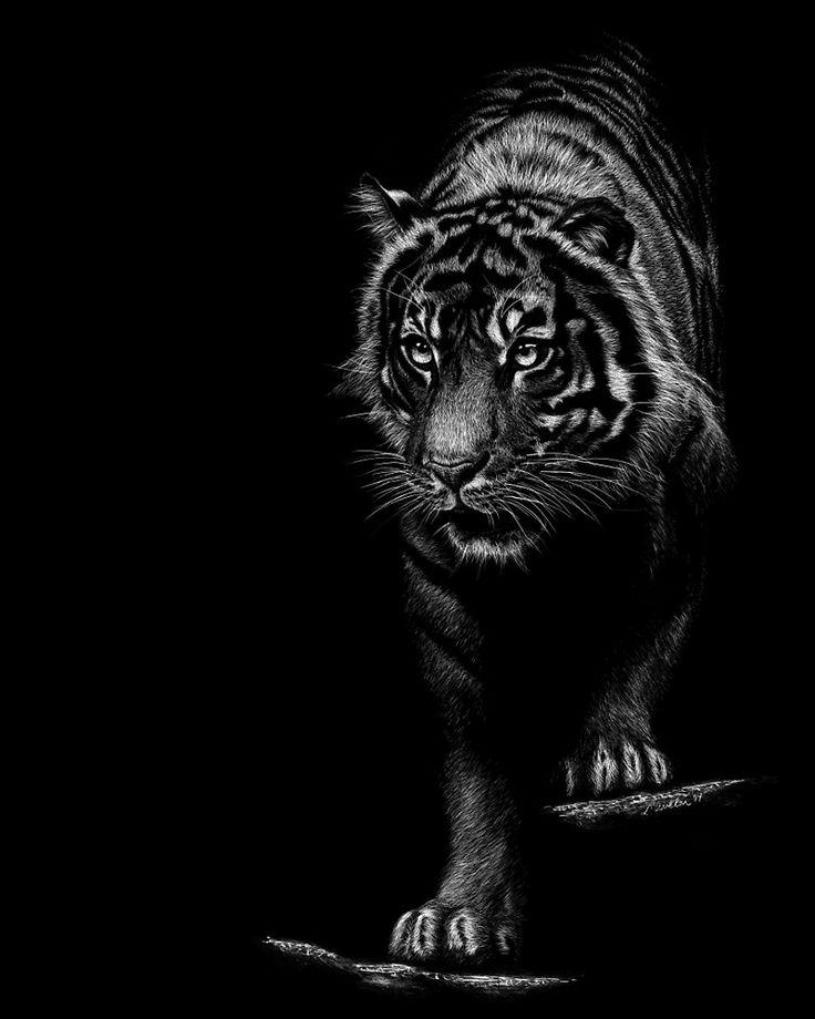 темные картинки с тигром найдете