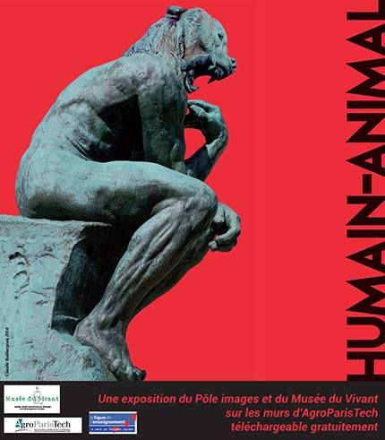 Exposition 2014 : Humain - Animal / ©Musée du Vivant - AgroParistech