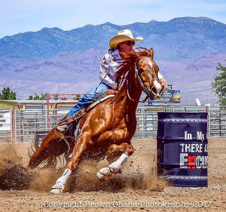 #Repost @brownohanaphotography  Kari Brough 1D Winner of the Two Chicks Barrel Race. Used a remote trigger on a D3300 at Barrel two while using a D500 as primary #barrelrace #horse #horses #horsesofinstagram