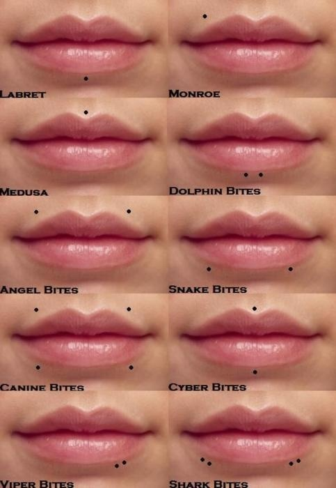Lips piercings (: viper &.snake bites :)))))