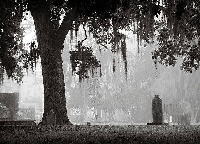 Fog over Colonial Park Cemetery in Savannah, GA.  Visitors have reported seeing apparitions at the Colonial Park Cemetery in Savannah, Georgia.