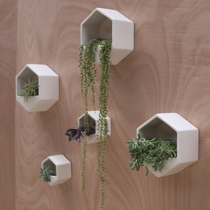 Hexagon Wall Hung Planter   White   Collected by LeeAnn Yare