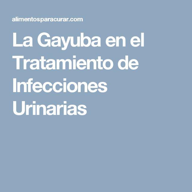 La Gayuba en el Tratamiento de Infecciones Urinarias