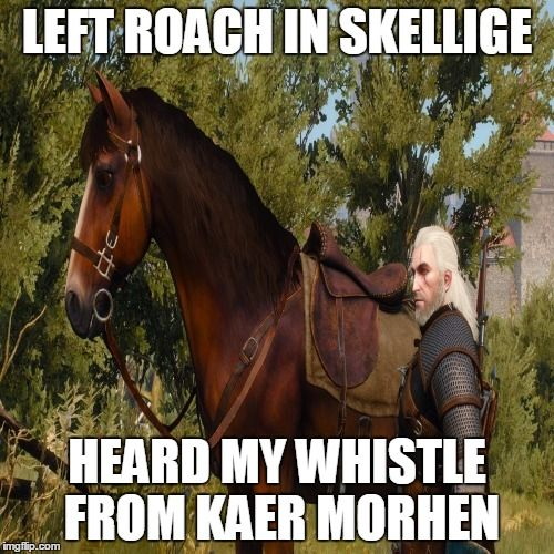 Funny Side Of Witcher 3