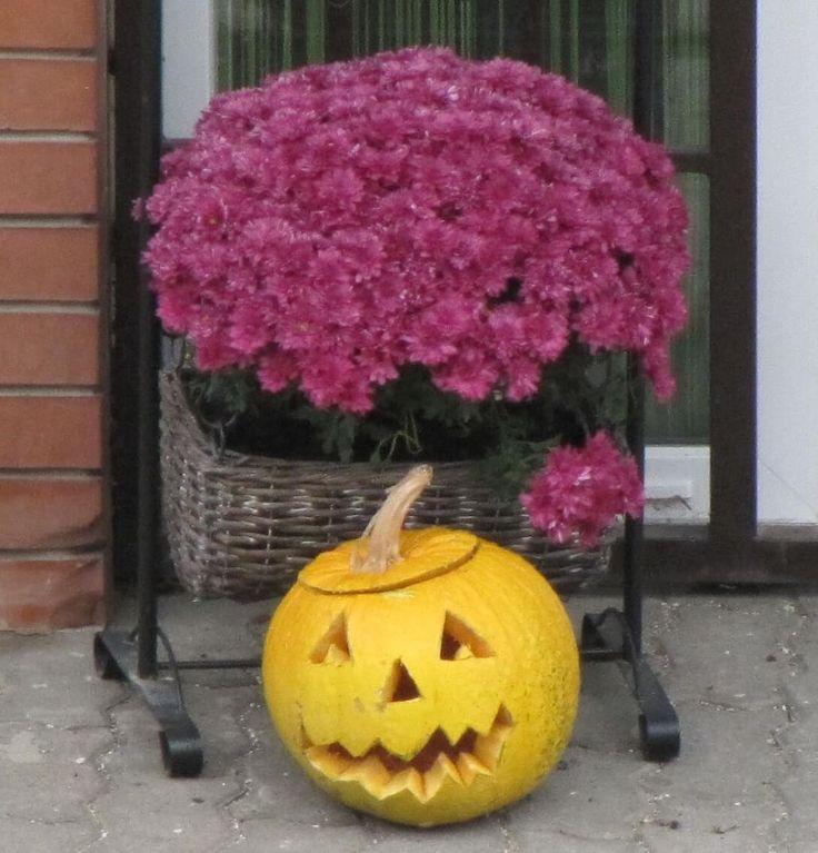 Halloween, a bohókás örömünnep: kelta hagyományokon alapulva terjedt el az angolszász országokban, majd az egész világon, jelképe a töklámpa https://viragotegymosolyert.hu/halloween-a-bohokas-oromunnep/