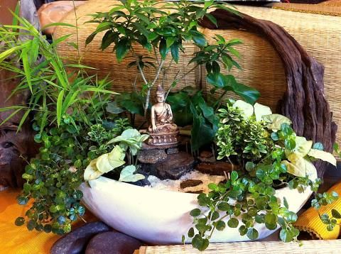 Captivating Miniature Gardening With TwoGreenThumbs.com