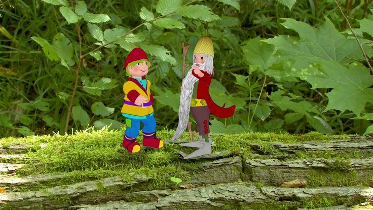 Skrzat Borówka to edukacyjny program dla dzieci przedstawiający świat przyrody i ekologii. Najmłodsi widzowie wędrują z tytułowym Skrzatem Borówką przez lasy...