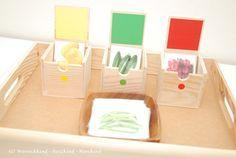 Wunschkind - Herzkind - Nervkind: Obst und Gemüse nach Farben