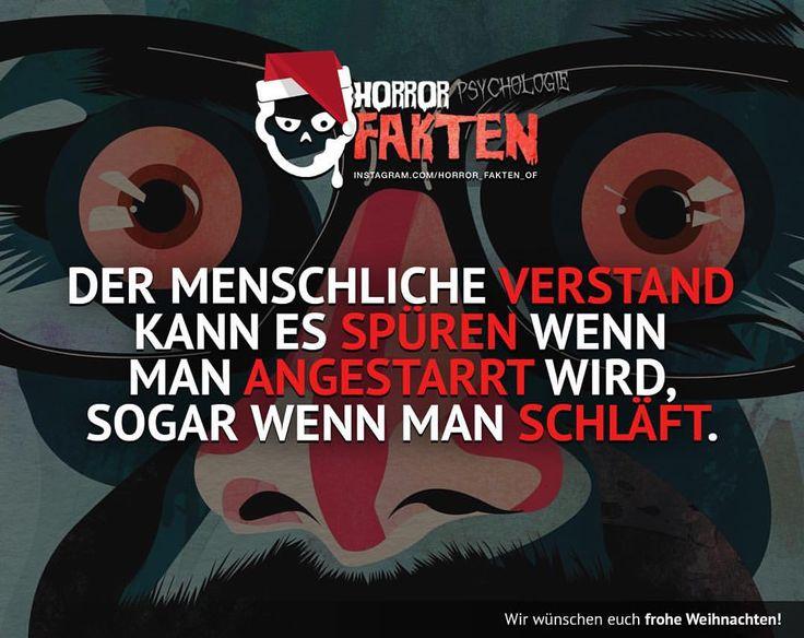 Kennt ihr das gefühl wenn ihr glaubt angestarrt zu werden?  So dies war der letzte Fakt für heute . Wir wünschein euch noch weiters frohe Weihnachten und Stay Creepy   #horror #fakten #horrorfakten